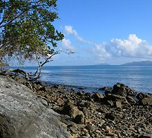 Island Breeze by nvs7