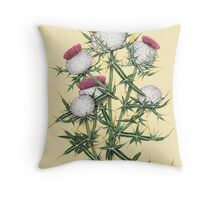 Woolly Thistle - Cirsium eriophorum Throw Pillow