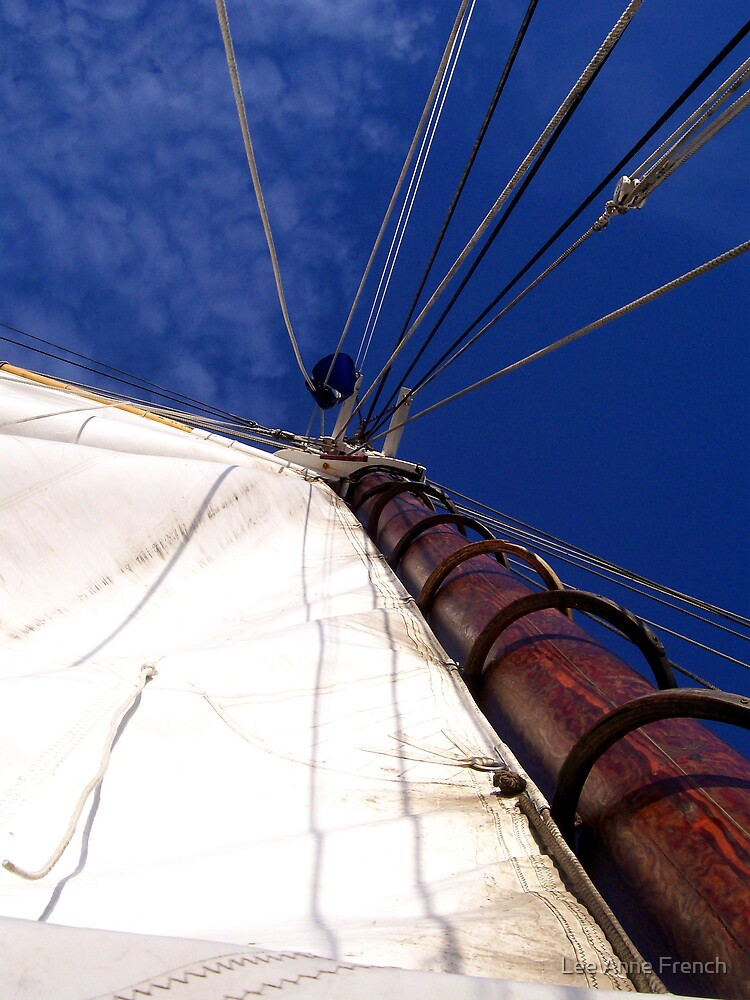 Sunet Sail by Lee Anne French