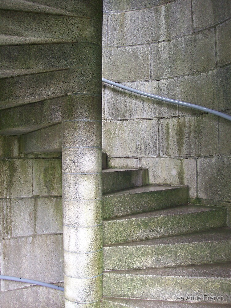 Fortress Staircase by Lee Anne French