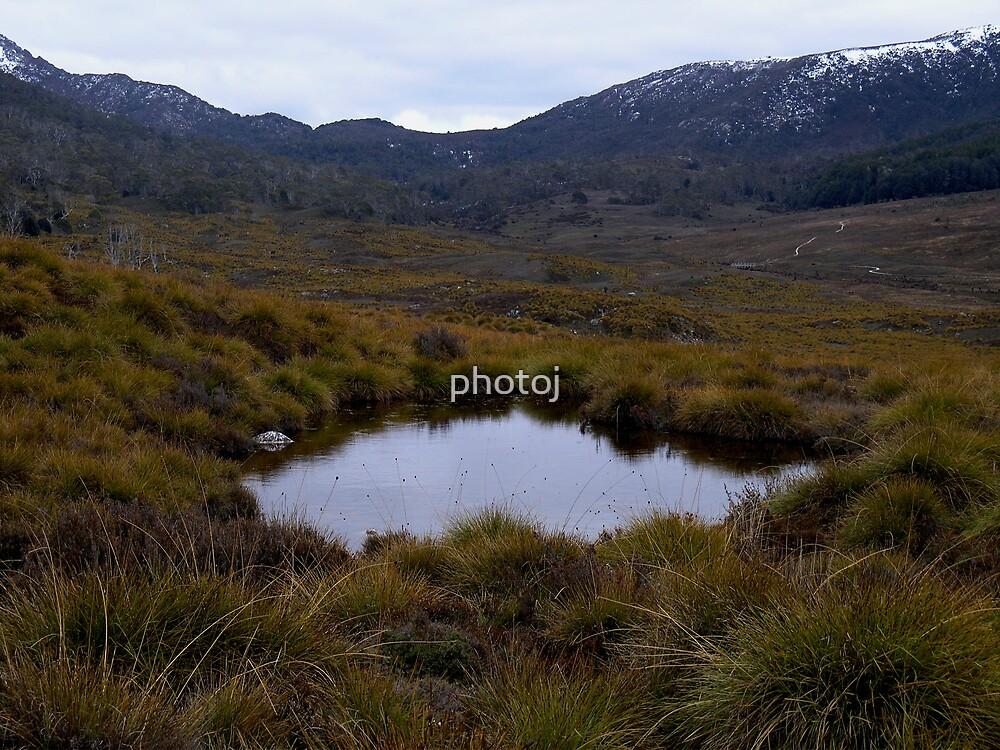 photoj-Tasmania, Cradle Mt National Park by photoj