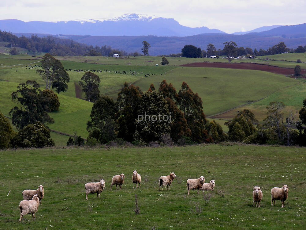 photoj-Tasmania Countryside  by photoj