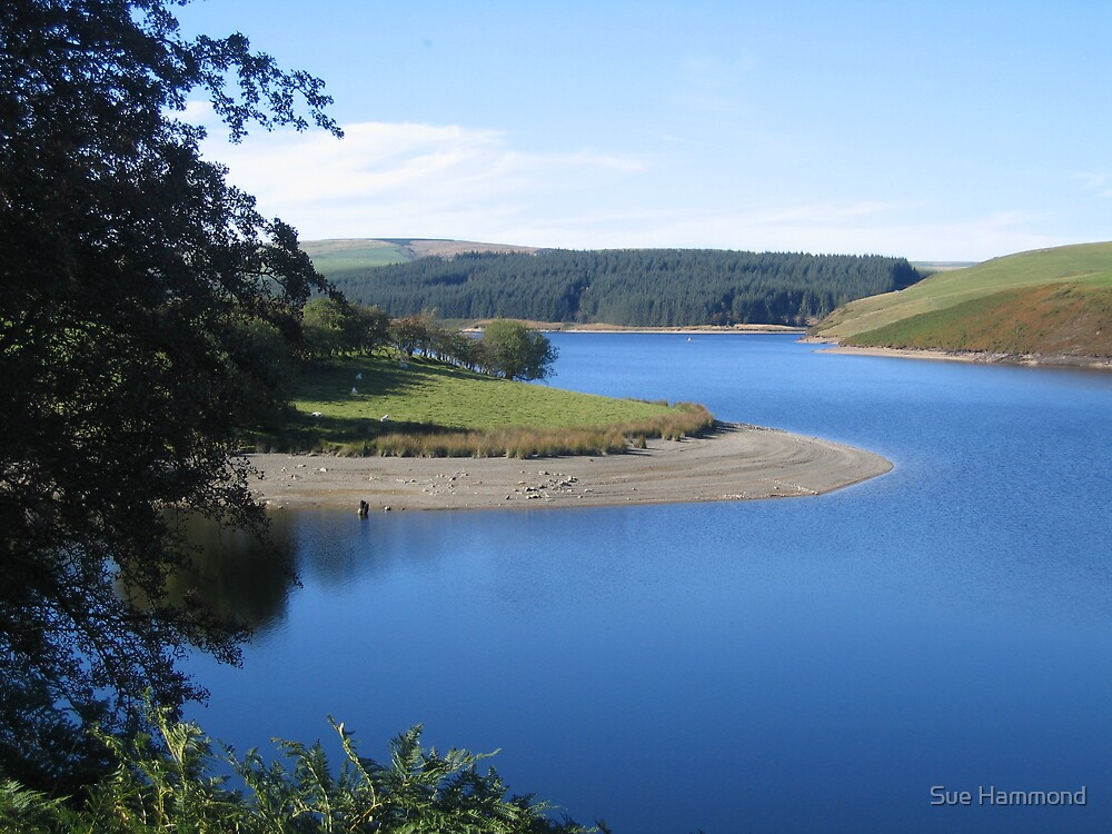 LLandiloles lake by Sue Hammond