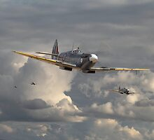 Spitfire - Strike Force by warbirds