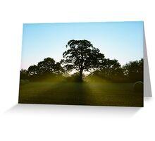 Early Sun Greeting Card