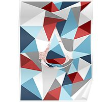 Assassin's creed polygon Poster