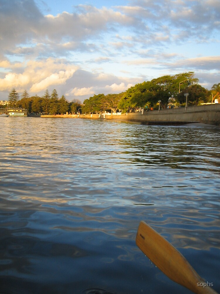 Rowing at Rose Bay  by sophs
