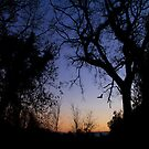 End of the day by MigBardsley