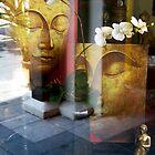 Buddha reflections. by marijkasworld