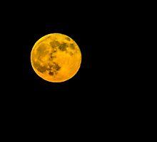 Lunar Eclipse by rhigosrebel