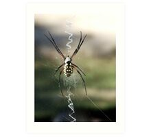 Along Came A Bigger Spider Art Print