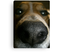 Does my nose look big in this? Canvas Print