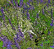 Comic Abstract Purple Flowers by steelwidow
