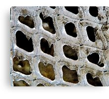 Ice Waffles Canvas Print