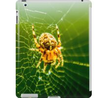 Macro Shot Cute Spider iPad Case/Skin