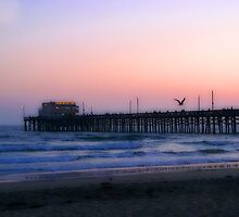 Newport Pier by Barbara Gordon