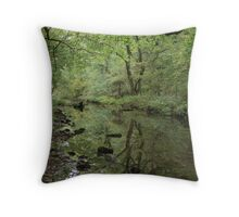 Reflections...... Throw Pillow