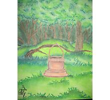 Wishing Well Forest Photographic Print