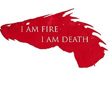 I am Fire I am Death by seingalad