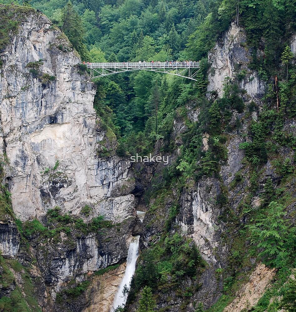 The Bridge by shakey
