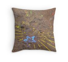 Fair Reflection Throw Pillow