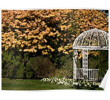 Trumpet trees and gazebo Poster