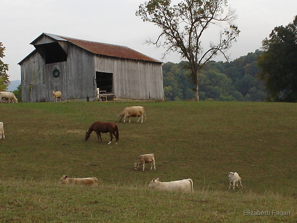 Tennesse Farm by Elizabeth Fagan