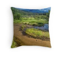 The Back Country Landscape Throw Pillow