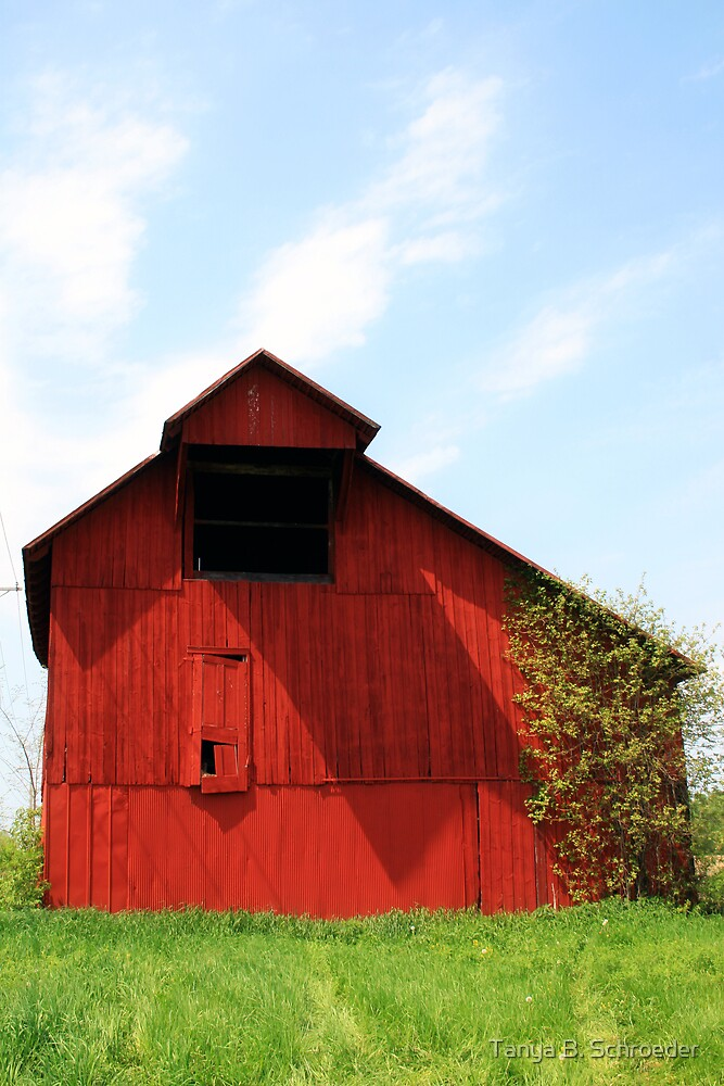 Red Barn by Tanya B. Schroeder