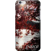 Peaceful Sunshine Through Leaves iPhone Case/Skin