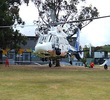 Helicopter by Wal Taylor