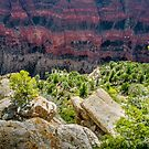 Canyon Edge by barkeypf