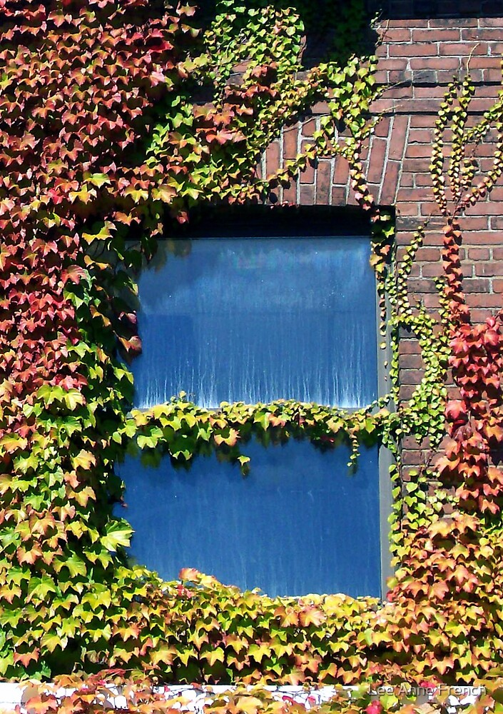 Ivy Window by Lee Anne French