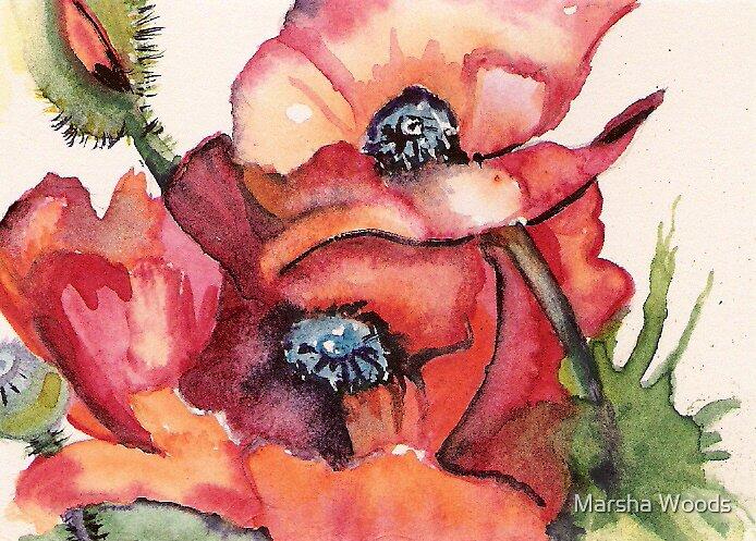 Oriental Poppies by Marsha Woods