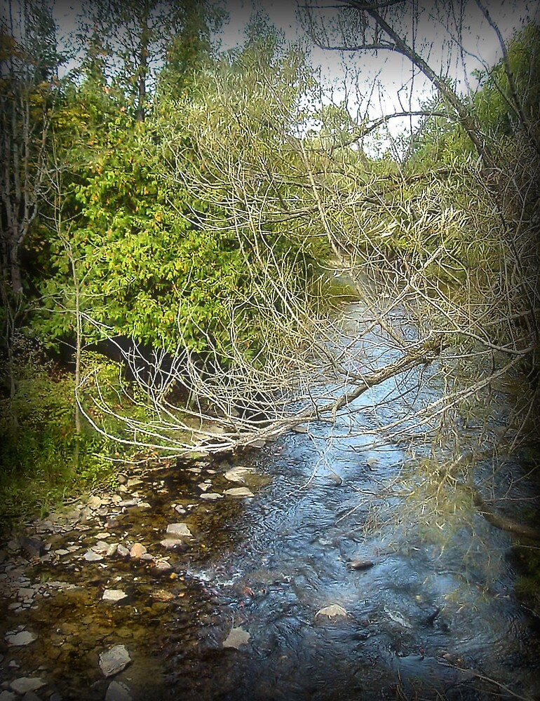 Ocqueoc River by Erika Benoit