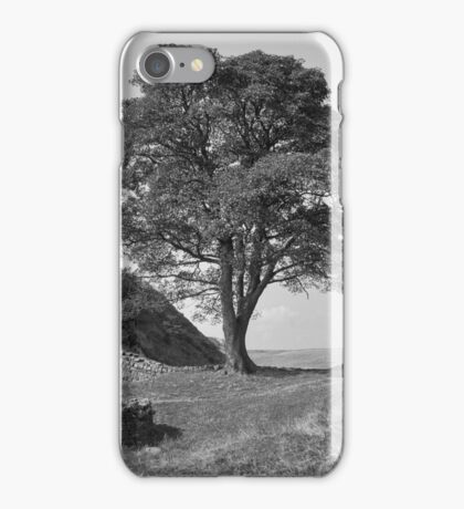 Sycamore Gap iPhone Case/Skin