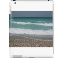 Beach at Point Betsy iPad Case/Skin
