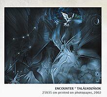 Encounter by EvyGabi