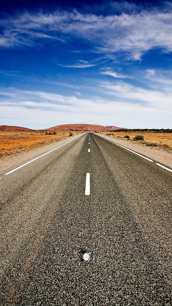 Road Trip by morealtitude