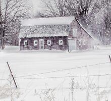 Weathering the Storm by SandraNightski