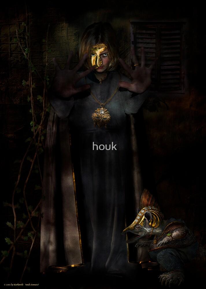 taste of darkness by houk