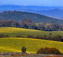 High Country Hills by Mark Higgins