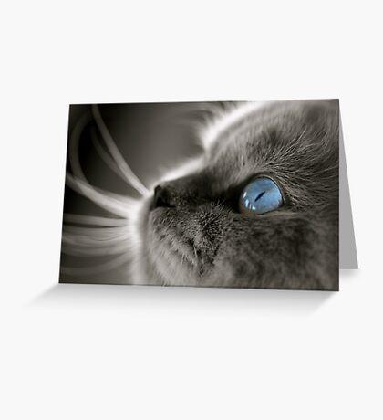 Blue Gaze Greeting Card