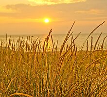 Sunset at Montague Beach by Kathy Russell