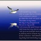 Fears by snowbird
