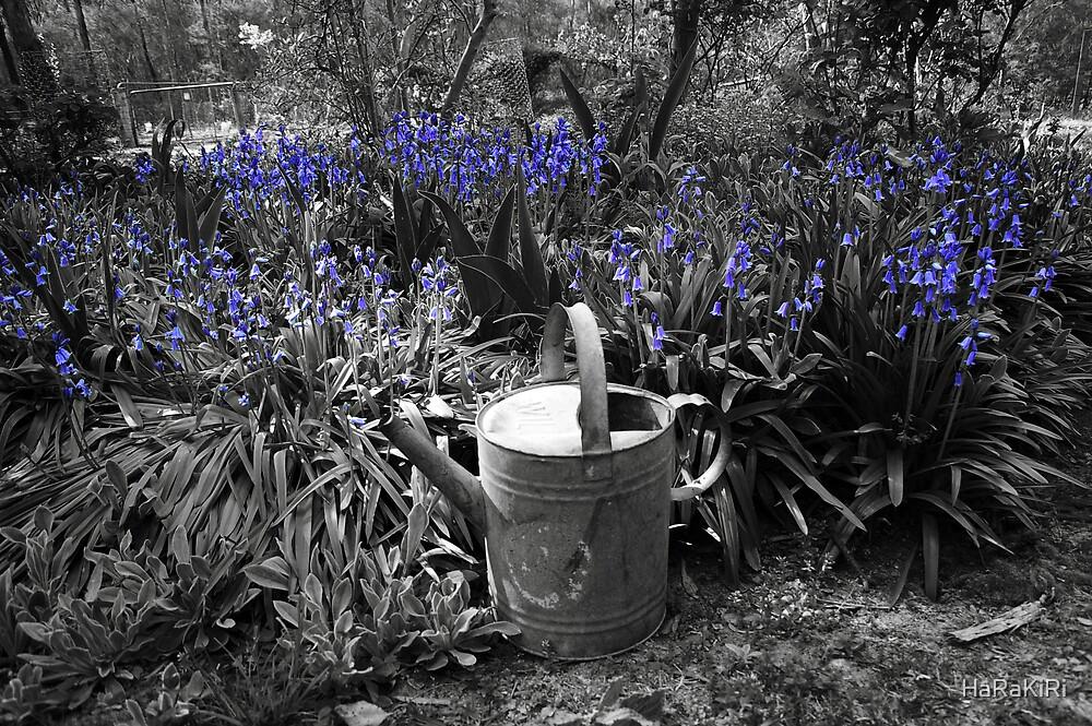 Blue Bells by HaRaKiRi