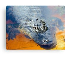 What Lurks In The Water Canvas Print