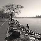 Watching the Hudson Flow by Curley