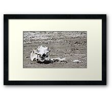 Death in a Dead Lake. The Stark reality of Climate Change, Tanzania Framed Print