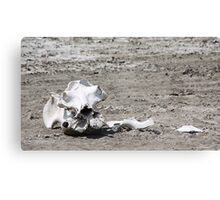 Death in a Dead Lake. The Stark reality of Climate Change, Tanzania Canvas Print